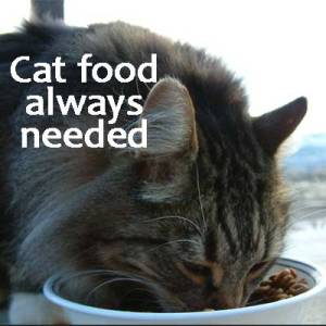 cat-food-needed
