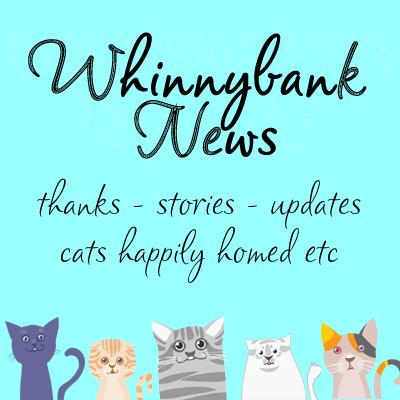 whinnybank nes with mug shots copy