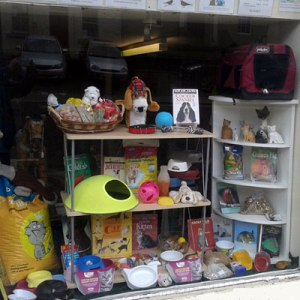 Newburgh shop's pet supplies window display - it's working well for us & has already brought in a couple of new parrot food customers!