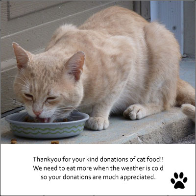 thanks-food-donations