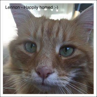 lennon-homed